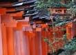 Deretan rapat Torii warna jingga di jalur pendakian Fushimi Inari-taisha, Kyoto, Jepang.