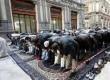 Muslim Italia shalat berjamaah di Kota Naples.