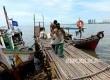 Nelayan kerang hijau Muara Angke menurunkan muatannya di kejauhan tampak bangunan apartemen di kawasan Pantai Mutiara yang juga  didirikan di atas pulau reklamasi