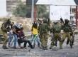 Polisi Israel yang menyamar menangkap pemuda Palestina yang sudah terluka, Rabu (7/10).