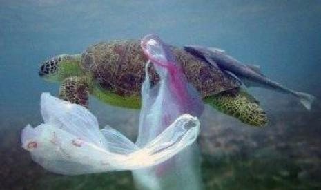 Sampah dan barang-barang di laut