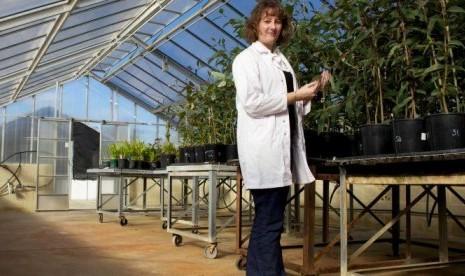 Peneliti Australia Temukan Cara Mencegah Jamur pada Makanan