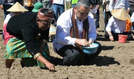 In Picture:  Fokus Produk Unggulan Bawang Putih, Pendapatan Warga Desa Sembalun Meningkat