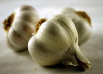 Bawang putih, salah satu peningkat daya tahan tubuh