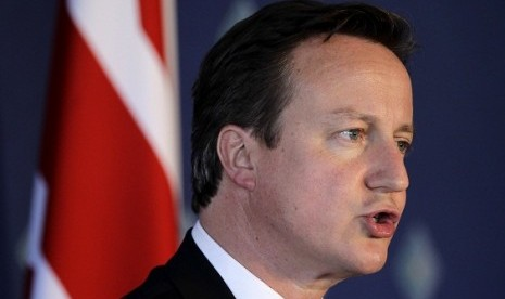 Britain's Prime Minister David Cameron speaks during a news conference on the second day of the G20 Summit in Los Cabos, Mexico June 19, 2012.