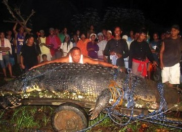 Buaya raksasa yang berhasil ditangkap di Filipina