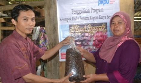 Hasil produksi usaha kopi luwak di Bengkulu