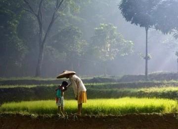 Ibu dan Anak (Ilustrasi)
