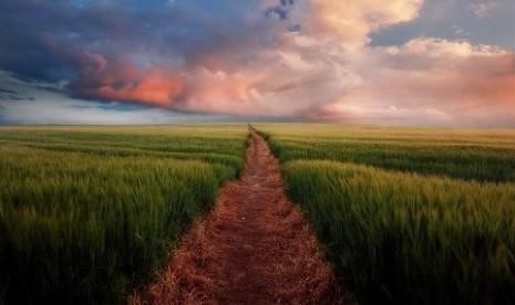 Sebab Munculnya Aliran Akidah dalam Islam (3-habis)
