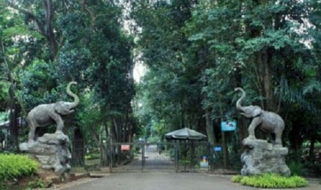 Kebun Binatang Ragunan.