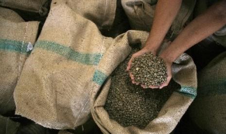 Kopi robusta lebih banyak dipilih untuk dijadikan kopi instan ...