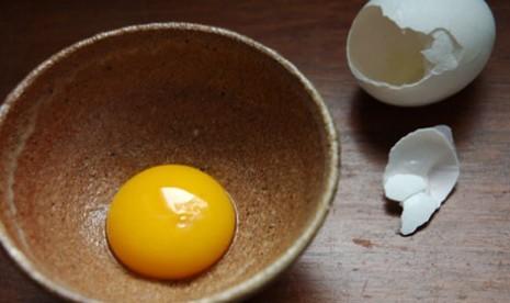 Kuning telur/ilustrasi