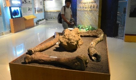 Museum Sangiran, Jawa Tengah