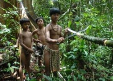 Orang Rimba/Suku Anak Dalam