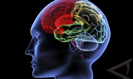 Tujuh Hal yang Bisa Membunuh Sel Otak (1)