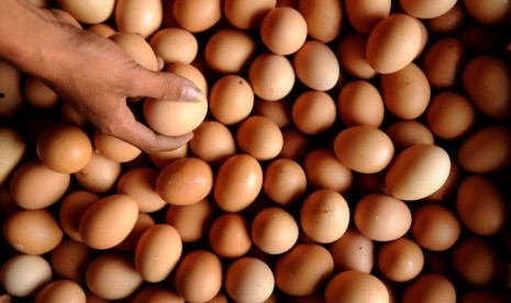 Pedagang memilah telur ayam disalah satu agen teur di kawasan Bukit Duri, Jakarta, Jumat (13/7). Jelang bulan puasa harga telur ayam terus melonjak hingga mencapai Rp.20.000/kg dari harga sebelumnya Rp.16.000/kg.