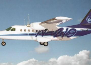 Pesawat N 219