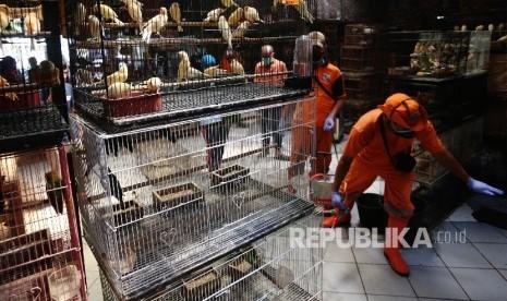 In Picture: Cegah Flu Burung, Pasar Pramuka Disemprot Desinfektan