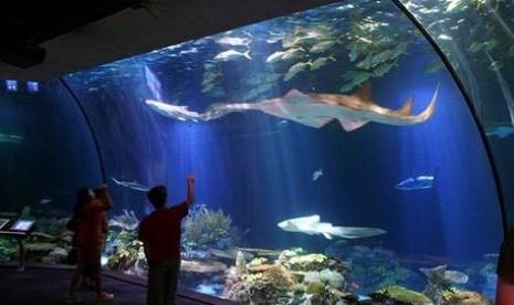 Seaworld Taman Impian Jaya Ancol menggunakan seawater (air laut) untuk