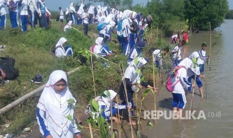 Pelajar Cirebon Catatkan Rekor Tanam Mangrove