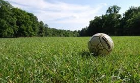 Bongkar Kasus Sepak Bola, Oegroseno: Harus Ada Tim Penyidik