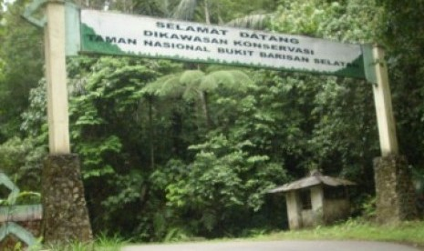 TNBBS Disebut Benteng Terakhir Flora Fauna Sumatra