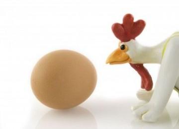 Ayam atau Telur Duluan? Terjawab Sudah
