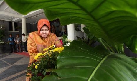 Walikota Surabya Tri Rismaharini menata bunga di halaman Balai Kota Surabaya, Jawa Timur, Kamis (12/3).