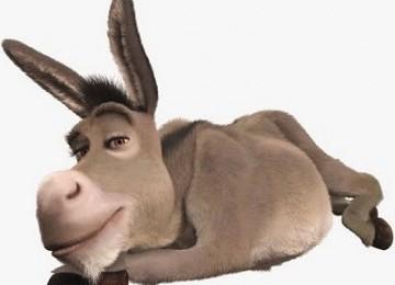 Humor Sufi: Keledai Membaca