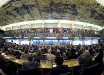 Indonesia Incar Kursi Dirjen FAO
