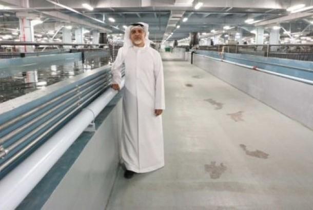 Ahmed Al Dhaheri berharap, perusahaannya suatu hari bisa menjadi produsen kaviar terbesar di dunia. (Ilustrasi)