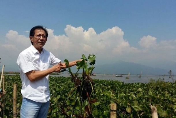 Direktur PT Sido Muncul Tbk, Irwan Hidayat di Rawa Pening, Kabupaten Semarang, Jawa Tengah.