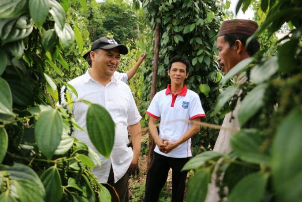 Gubernur Bangka Belitung, Erzaldi Rsoman Djohan bersama petani Lada mempersiapkan Resi Gudang Lada yang akan dirilis November 2017.