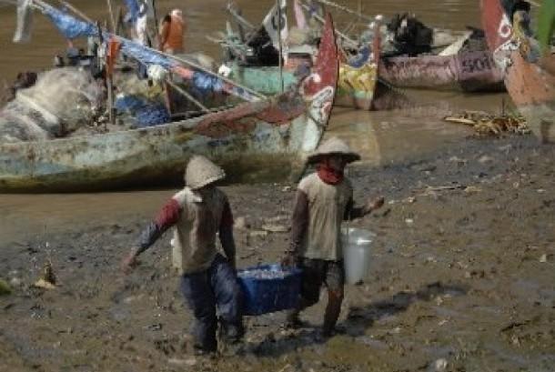 Nelayan mengangkat keranjang berisi ikan hasil tangkapan mereka. (ilustrasi).