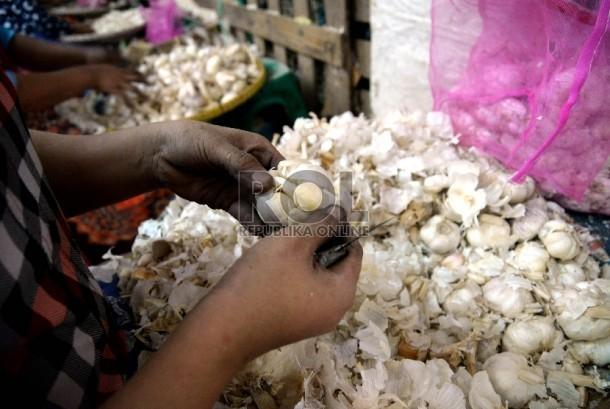 Pedagang memilah bawang putih impor di Pasar Induk Kramat Jati , Jakarta, Kamis (23/4). (prayogi/Republika).