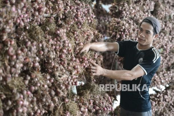 Pekerja memeriksa bawang merah yang dikeringkan di Gudang Bulog Divre Jakarta, Senin (16/5).  (Republika / Wihdan )