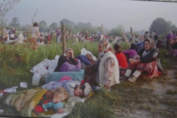 Pengungsi serbenica