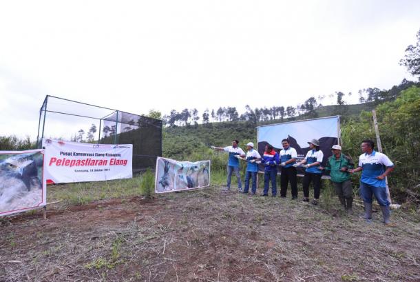 Pertamina bersama Pusat Konservasi Elang Kamojang (PKEK), melepasliarkan dua elang jenis elang ular ke alam bebas setelah satu tahun menjalani rehabilitasi.