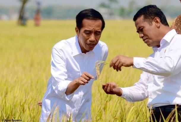 Presiden Jokowi sudah mengeluarkan paket ekonomi jilid II.