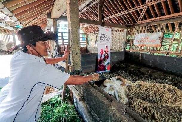 Rumah Zakat Kembangkan Potensi Ternak di Magelang