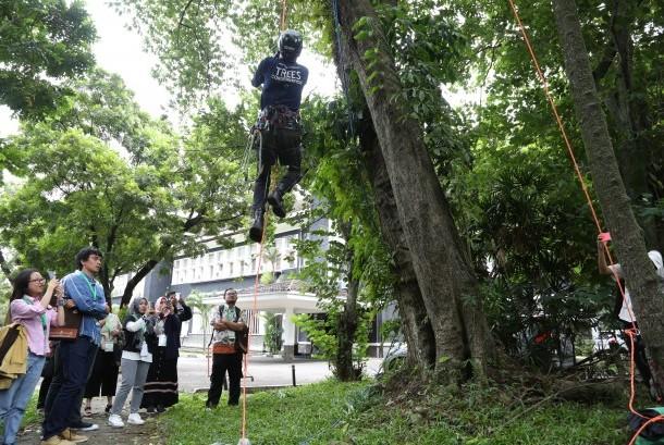 Salah satu aksi dalam rangka memperingati Hari Pohon Sedunia.
