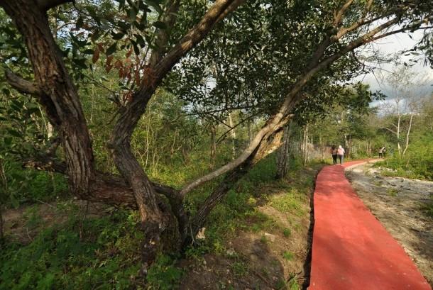 Sejumlah pengunjung berjalan di Objek Wisata Taman Hutan Raya (Tahura) Kapopo di Desa Ngata Baru, Kabupaten Sigi, Sulawesi Tengah, Rabu (31/8).
