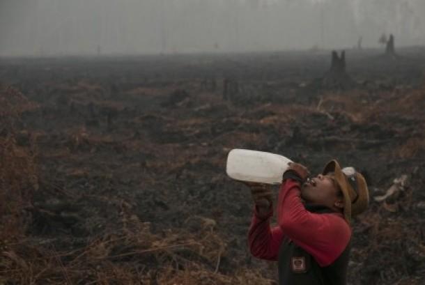Seorang personel pemadam kebakaran Manggala Agni beristirahat saat melakukan pemadaman kebakaran di hutan Kawasan Suaka Margasatwa Kerumutan, Kabupaten Pelalawan, Riau, Rabu (28/10).