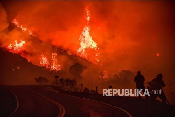 The Thomas fire membakar taman hutan nasional Los Padres National, Kalifornia, Jumat (8/12) waktu setempat.