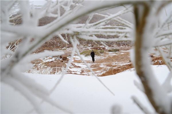 Fenomena Alam Paling Aneh, Al-Quds dan Arab Saudi Diselimuti Salju