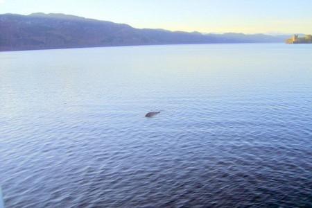Benarkah Ini Penampakan Monster Loch Ness? [ www.BlogApaAja.com ]