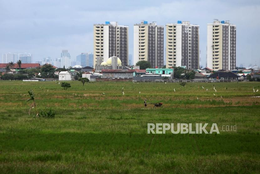 Petani membajak sawah dilahannya Kawasan Rotan Jaya, Jakarta Timur, Jumat (19/1).