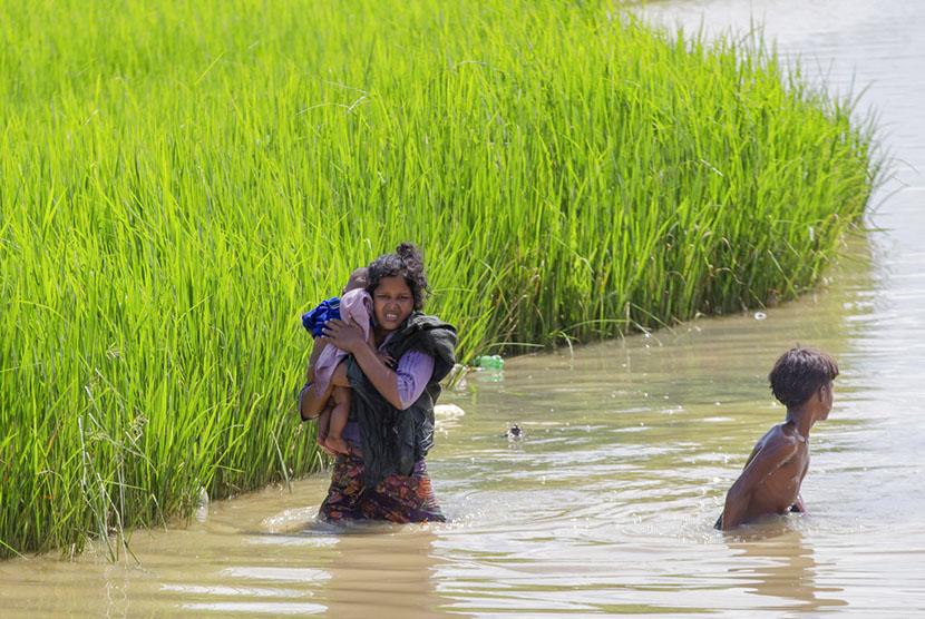 PBB Khawatir Pengungsi Anak Rohingya Tertular Penyakit