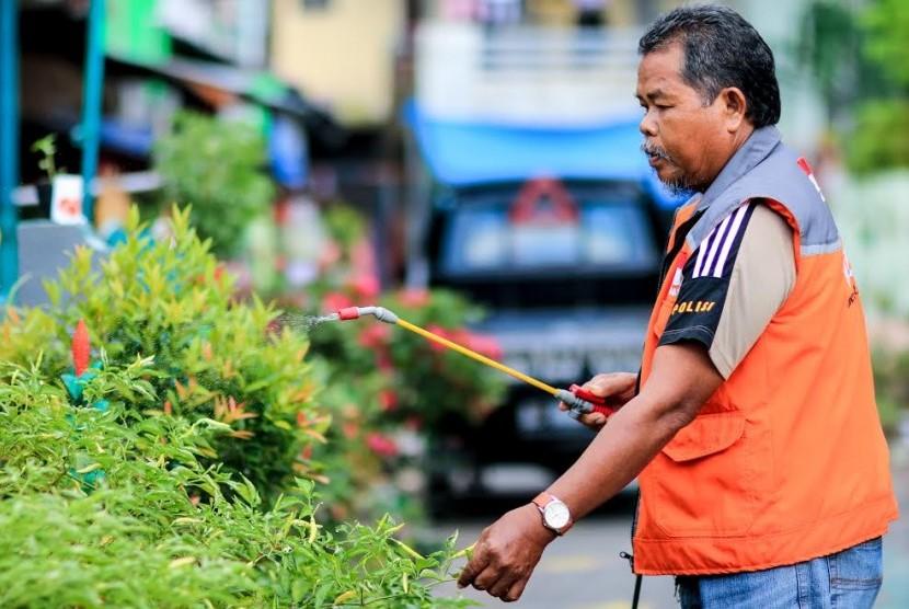 Aktivitas urban farming di Makassar.
