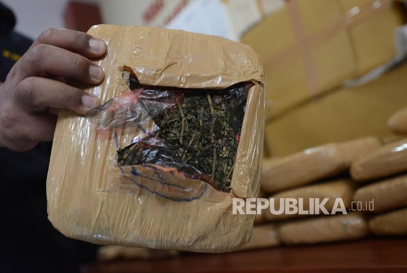 Anggota kepolisian menunjukan barang bukti berupa ganja saat menggelar konferensi pers pengungkapan kasus narkotika jaringan internasional di Rumah Sakit Polri, Jakarta Timur, Jumat (6/1).